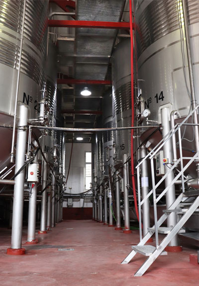 Bodega San Jose vinos a granel